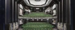 Trafalgar Theatre print 1 min72 620x429 1 74cc0i2d6sklugnsrdmfsh2og1vnu39omi